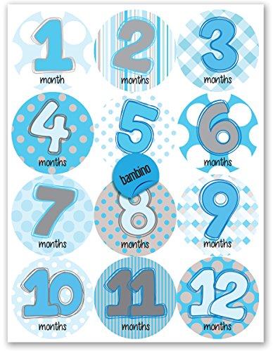 Baby *BOY* Apparel Celebration Stickers-Celebrate 12 Months-Photo prop & keepsake (Bambino Design)