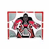 NHL Street Hockey Goals Shooting Target