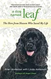 img - for Dog Named Leaf: The Hero From Heaven Who Saved My Life book / textbook / text book