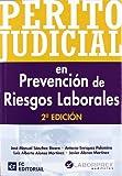 img - for Perito Judicial en Prevenci n de Riesgos Laborales book / textbook / text book