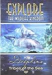 Explore the Wildlife Kingdom: Dolphin...