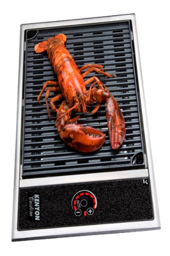 Kenyon B70061 Frontier All Seasons 220V No Lid Built In Electric Grill
