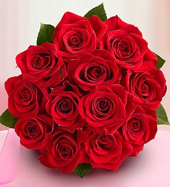 1800Flowers - One Dozen Red Roses - Bouquet Only