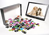 Photo Jigsaw Puzzle of LA-5927 Cat a Dog...