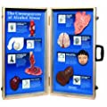 "HEALTH EDCO W43053 The Consequences of Alcohol Abuse 3D Display, 27"" Length x 28"" Width Opened"