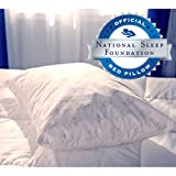MyPillow Classic Series Standard/Queen