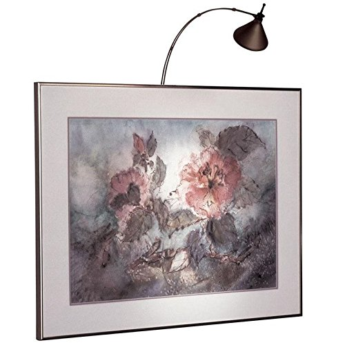 dainolite-lighting-hpic18-hw-obb-hardwire-18-inch-halogen-picture-light