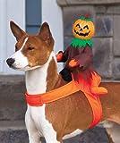 Scary Pumpkin Jack-O-Lantern Ride On Dog Halloween Costume