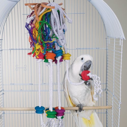 Bird Toy – Wild Series – Berserk Challenge Toy – Great Toy for Medium to Large Birds