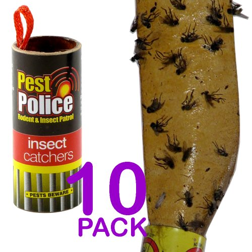 pack-of-10-sticky-insect-catchers-poison-free-no-harmful-insecticides