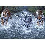 Royal & Langnickel Malen nach Zahlen Drei Tiger