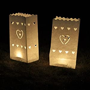 10-Pack Glo-Wax Luminary Bags (Style B) with FREE 10hr Tea lights by Sourcing4U Limited