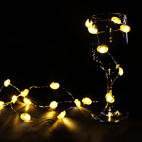Thanksgiving String Lights Outdoor : IMPRESS LIFE Pumpkin String Lights 10 ft Copper Wire 40 LEDs Battery-powered for Indoor, Covered ...