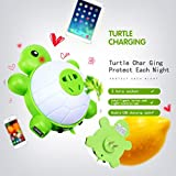 Manve Baby turtle LED Night Light, with light Sensor and Dual USB Wall Charger, in the Dark for Hallway Bathroom bedroom Living Room Kitchen (Warm light)