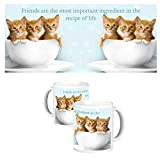 ToduGift Friends are most important mug