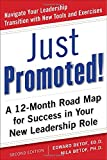 Just Promoted! A 12-Month Road Map for Success in Your New Leadership Role, Second Edition
