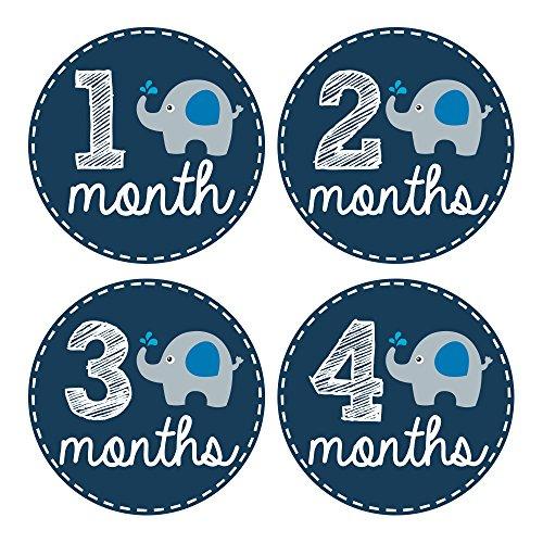 Pinkie Penguin Elephant Baby Monthly Stickers - Milestone Onesie Stickers - 1-12 Months - Baby Boy Month Stickers