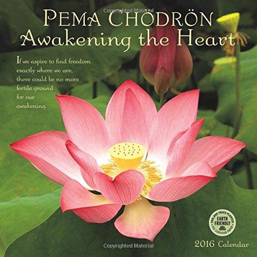 Pema Chodron 2016 Wall Calendar