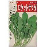 在来固定種 野菜の種「ロケットサラダ〔ルッコラ〕」3ml 畑懐〔はふう〕