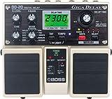 """Roland Digital Delay """"GIGA DELAY"""" DD-20"""