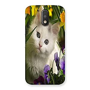 Ajay Enterprises Special Cat With Flowers Back Case Cover for Motorola Moto G4 Plus