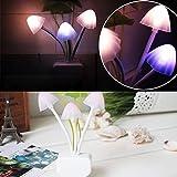 1-X-CrazyDeal-New-Colours-Romantic-LED-Mushroom-Dream-Night-Light-Bed-Lamp-genial-comfortable