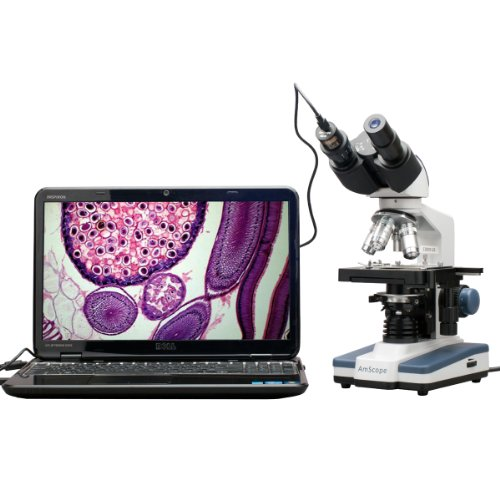 Amscope B120B-E1 Digital Siedentopf Binocular Compound Microscope, 40X-2000X Magnification, Brightfield, Led Illumination, Abbe Condenser, Double-Layer Mechanical Stage, Includes 1.3Mp Camera And Software
