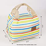 Wis-Done(TM) XB02 Insulation Lunch Bag Small Grocery Food Handbag Zipper Ice Tote for Men Women Kids(Blue)
