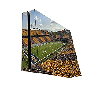 College Football Stadiums Playstation 4 PS4 Console Vinyl Decal Sticker Skin by Compass Litho