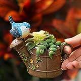 New Mini Showers Bird Flower Pots Irons Flowerpot For Succulents Bonsai Planter Plant Pot Herramientas Garden...