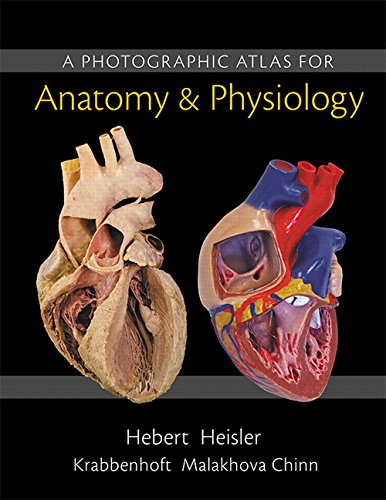 Free Download: A Photographic Atlas for Anatomy & Physiology