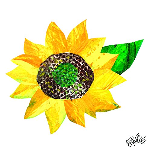 Marmont Hill Eric Carle's The Very Hungry Caterpillar Sunflower-2 Canvas Wall Art, 18 by 18-Inch