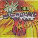 Banda Maguey Mix