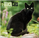 img - for Black Cats 2015 Square 12x12 (Multilingual Edition) book / textbook / text book