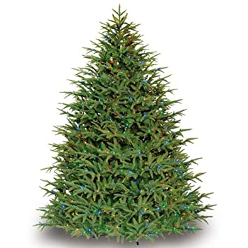 4a7c7487e4c Belvedere Fir with Light Changer Remote - 3372 Realistic Molded Tips - 1200  Mini Lights - Barcana Artificial Christmas Tree best price. you want to ...