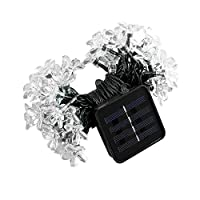 Solar LED String Lights Waterproof Christmas Ambiance Lights for Outdoor Lawn Fairy Garden Wedding and Christmas Tree from BENGOO