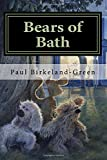 Bears of Bath: Vessel of Light