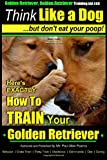 Golden Retriever, Golden Retriever Training AAA AKC   Think Like a Dog, but don': Here's EXACTLY How to TRAIN Your Golden Retriever (Volume 1)