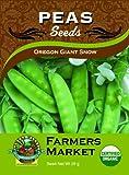 Toland Home Garden Organic Oregon Giant Snow Pea Seeds