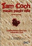 Jam Coch Mewn Pwdin Reis: Cerddi Bardd Plant Cymru 2000 a Phlant Cymru (Welsh Edition)
