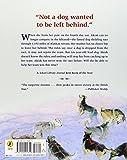 Akiak-A-Tale-From-the-Iditarod