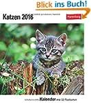 Katzen 2016: Kalender mit 53 Postkarten