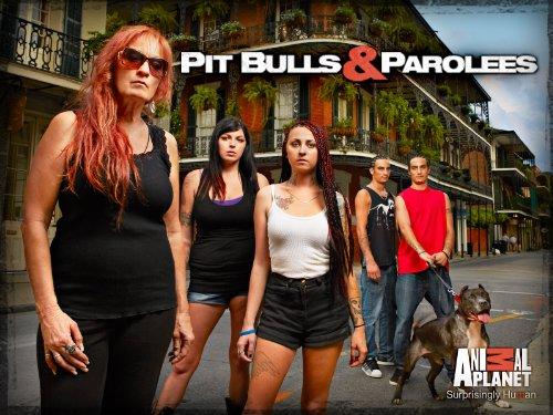 PITBULLS  & Prisonniers  (Pit Bulls and Parolees) 51Gr81HZmvL._SX940_