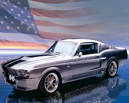 Ford Mustang GT500 American Muscle Sports Car Photography Hobby Poster Print 16 by 20 (Muscle Cars Poster compare prices)