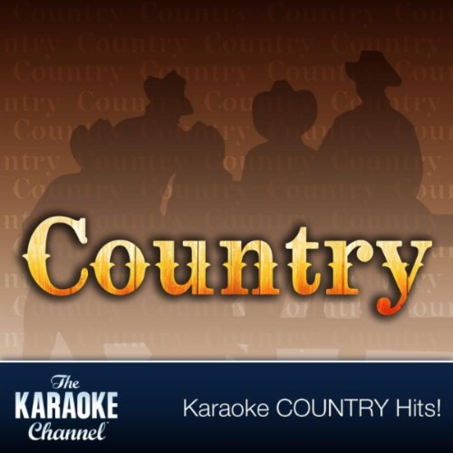 The Karaoke Channel - In the style of Willie Nelson / Ray Charles - Vol. 1