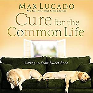 The Cure for the Common Life Audiobook