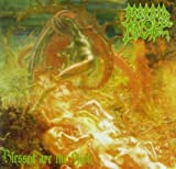 MORBID ANGEL BLESSED ARE THE SICK by MORBID ANGEL (2008-11-27)