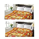 Christy's Collection Super Soft Printed 2 Piece Cotton Blend AC Double Blanket - Multicolor - B0166E7E2U