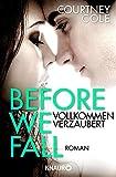 Before We Fall - Vollkommen verzaubert: Roman