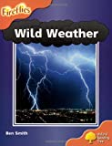 Ben Smith Oxford Reading Tree: Level 6: Wild Weather